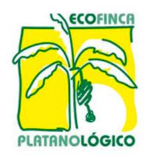 Platanológico